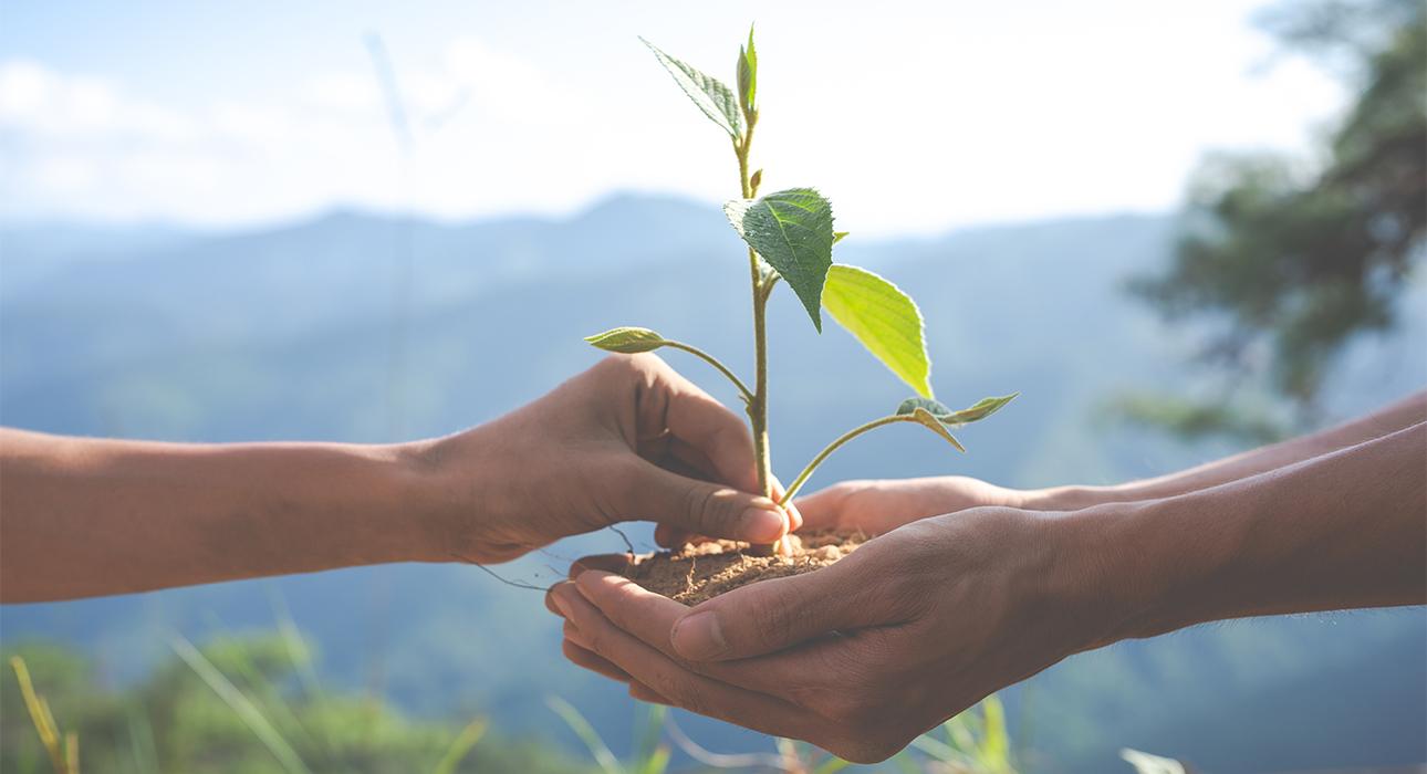 Eco Living: доклад ООН — большинство изменений климата необратимы