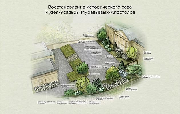Восстановлением исторического сада Музея-Усадьбы Муравьевых-Апостолов