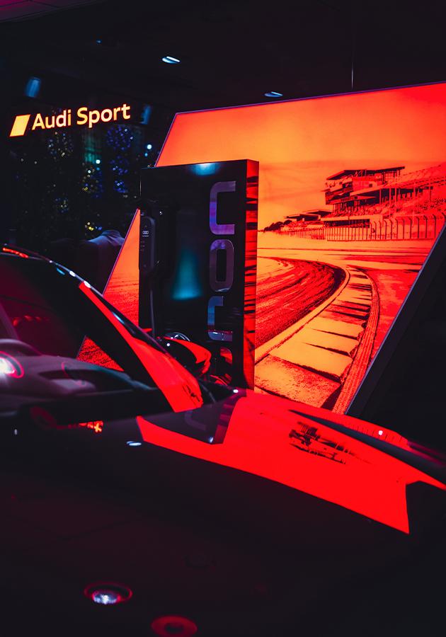 Выставка Safari Verucca в Audi City Moscow