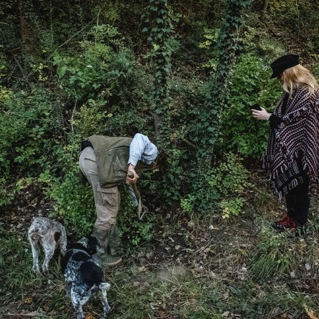 Travel-дайджест: зеленый свет для поклонников Гонконга, охота на тосканский трюфель и гастросеты в Pioner Café в Ялте