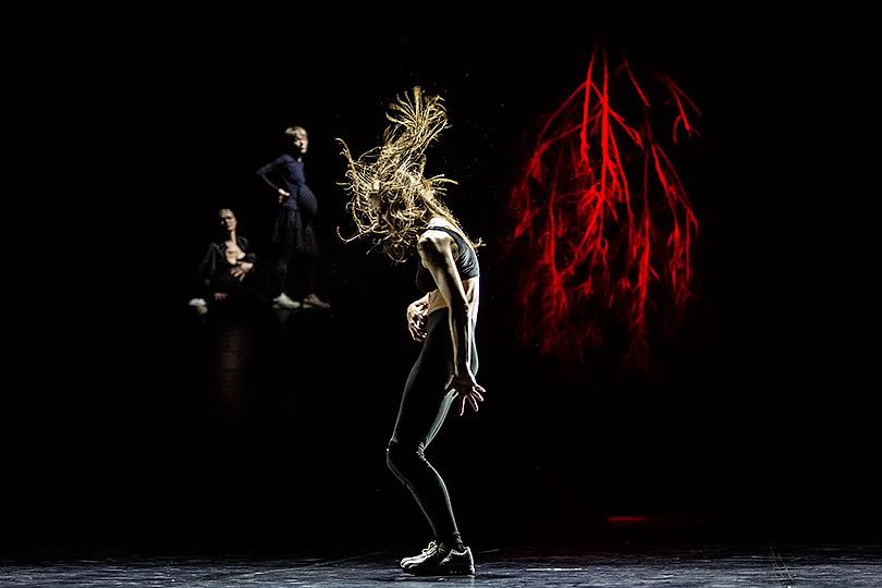Впространстве сна: новые хореографические спектакли в«Гоголь-центре» итеатре «Практика»