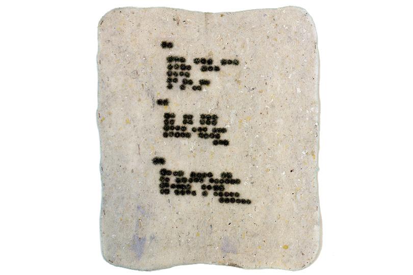 Выставка «Прямое воздействие» Государственная галерея наСолянке 20апреля— 21мая Лиза Морозова. Три стихотворения, написанные насобственном языке А.Крученых