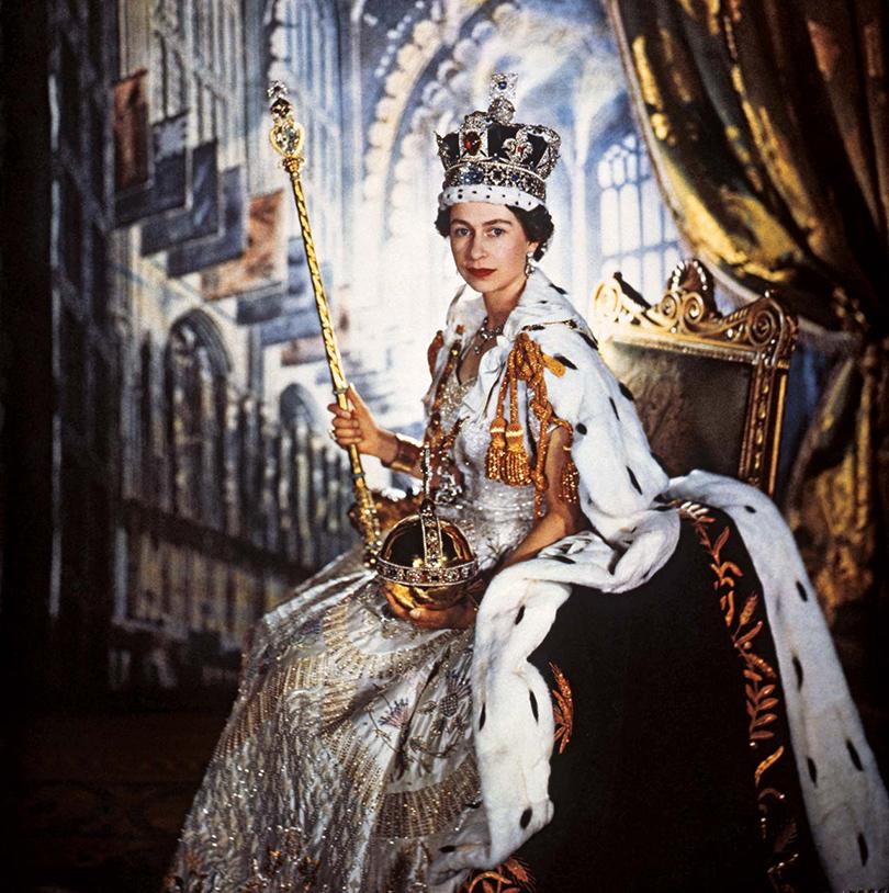 средиземноморской король без королевы картинки комплекс ставрополь многоэтажный