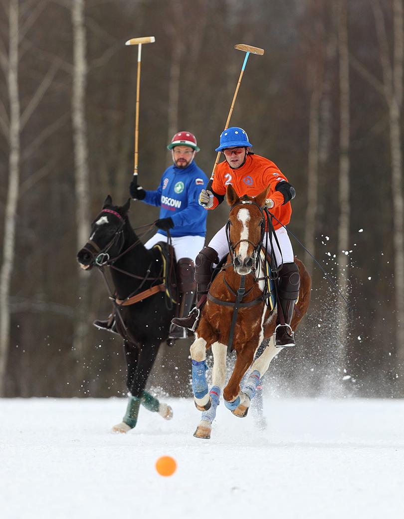 Турнир по поло на снегу Tseleevo Winter Open