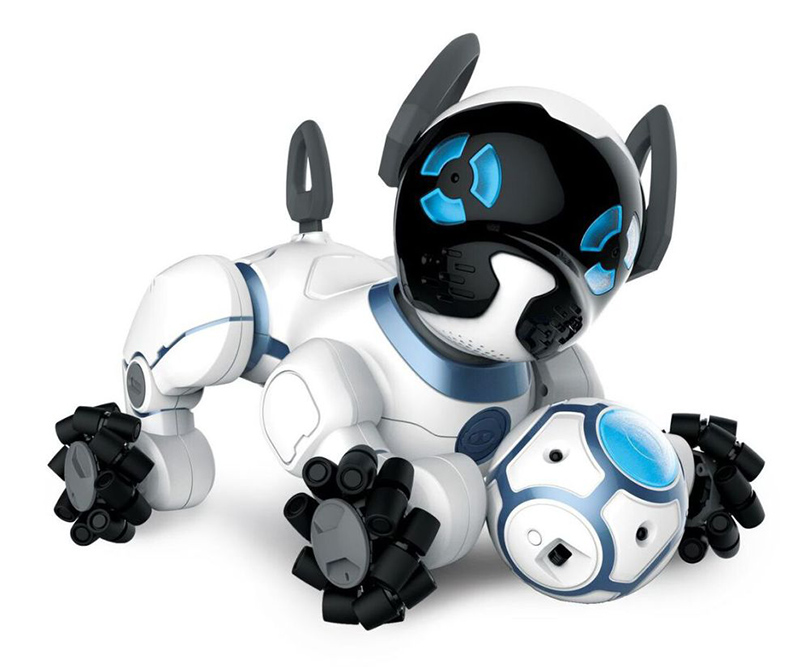 Posta Kid's Club: робот в детской — воспитываем программистов с молодых ногтей. WowWee CHiP