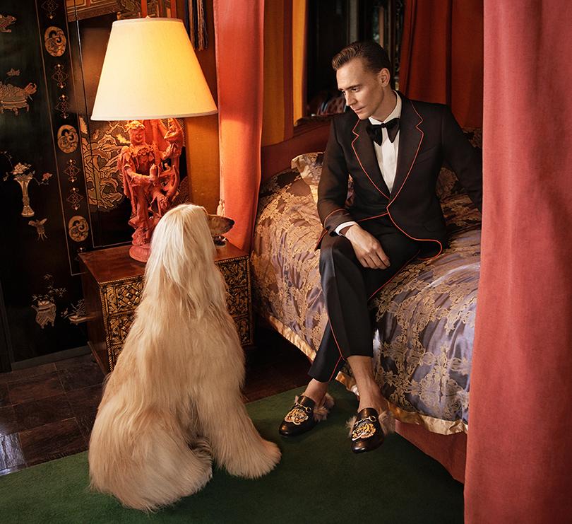 Men in Style: Том Хиддлстон в рекламной кампании Gucci
