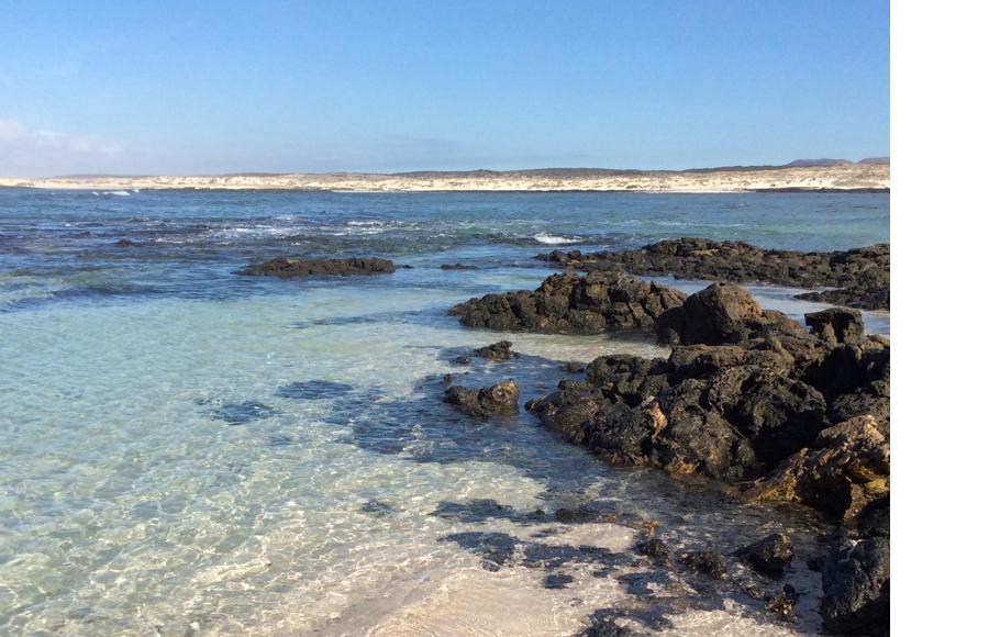Испанский пляж El Cotillo Beach & Lagoons, занявший один из Канарских островов