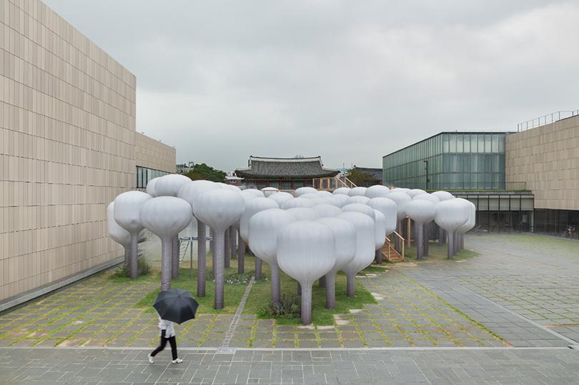 «Грибное поле» Shinseon Play вСеуле