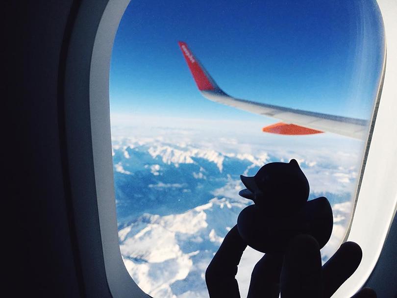 Instagram недели: Модная уточка Pierre Le Duck (@Pierreleduck). Пьер летит на Неделю высокой моды в Париже