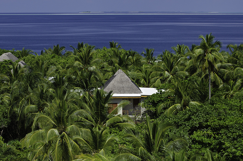 Новый год. Идея наканикулы: отель Amilla Fushi наМальдивах— «бодизм», ностальгия поSpice Girls илюбимый ресторан Кейт Мосс