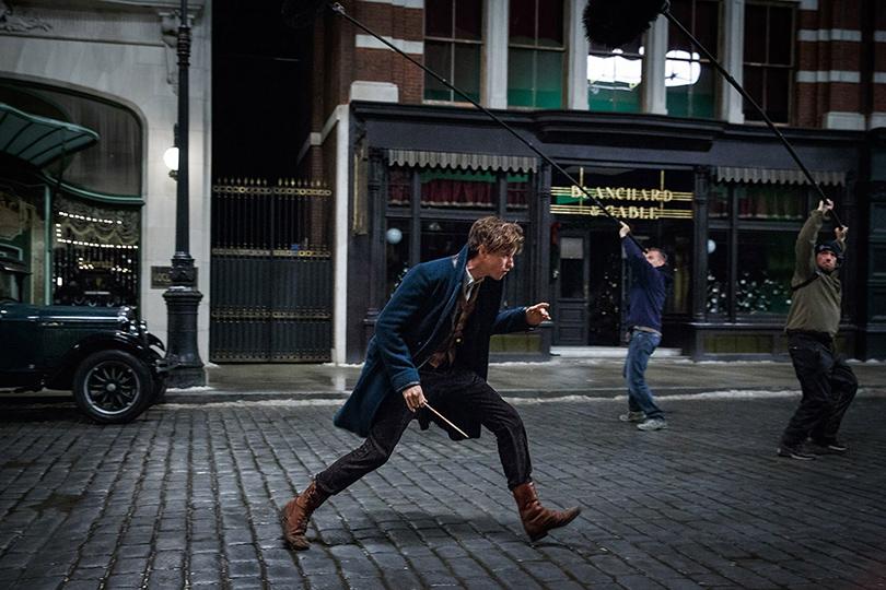 Кино науикенд: 5причин посмотреть фильм «Фантастические твари игде они обитают»