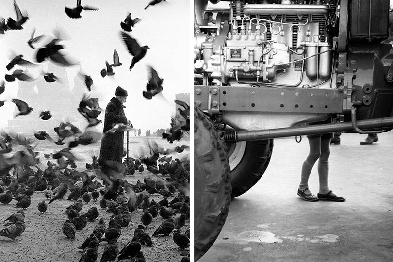 Старик иголуби. 1950-1960-е      Будущий механизатор.1960