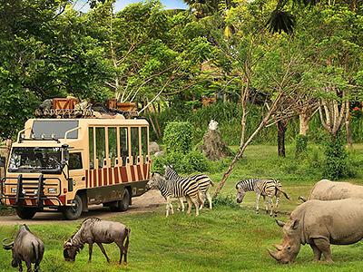 #postatravelnotes Бали— прекрасный иразный: продюсер Дмитрий Дудинский делится формулой идеального отдыха. Сафари-парк