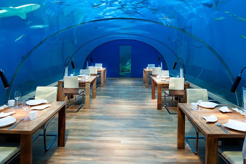 Первый подводный ресторан на Мальдивах — Ithaa — открылся более 10 лет назад именно здесь, в «Конраде»