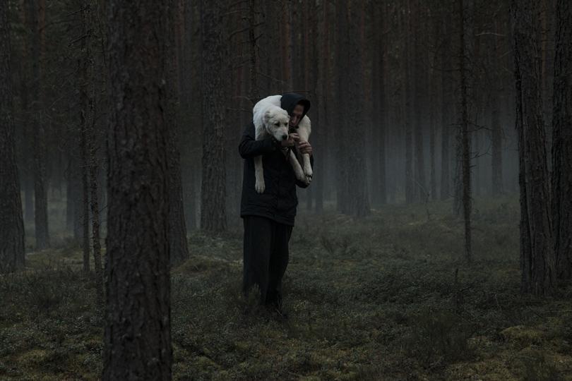 Что смотреть на Strelka Film Festival by Okko: 19июля— «Сердце мира»