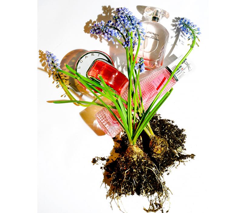 Парфюмерная вода Ever Bloom, Shiseido  Парфюмерная вода Live Irresistible Rosy Crush, Givenchy  Туалетная вода Omnia Coral, Bvlgari