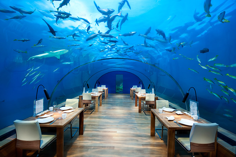 Гастроли шеф-повара московского ресторана Cantinetta Antinori Мауро Панебьянко вConrad Maldives