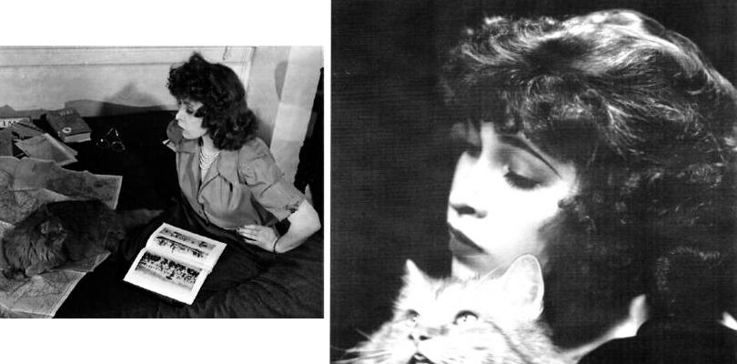 Суперженщины: художницы комиксов вколлекции Prada. Джуна Тарпе Миллс ипервая супергероиня