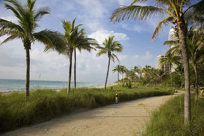 Между строк: фотовыставка «Женщина зачтением иеекнига» вМайами