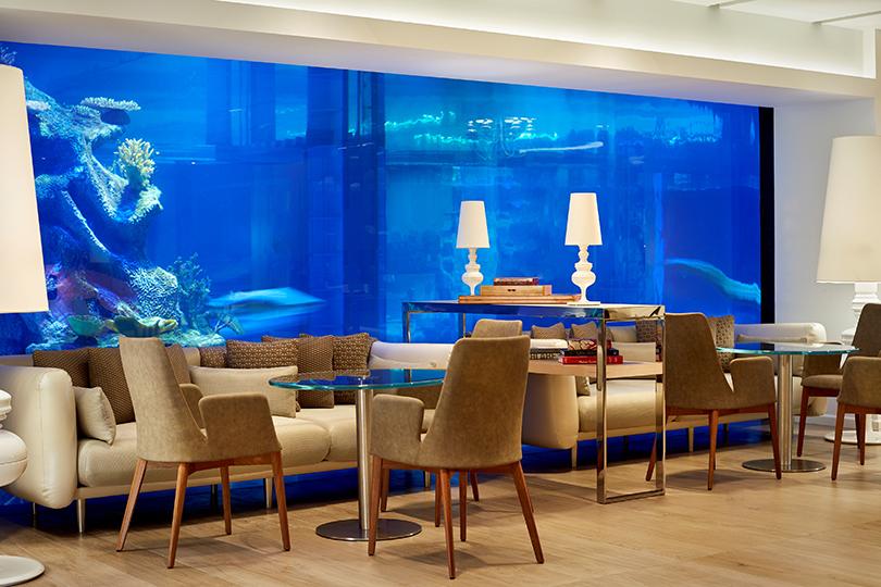 Куда поехать на майские: магнитный песок, уникальный аквариум и бесплатная ночь в Paragraph Resort & Spa Shekvetili под Батуми
