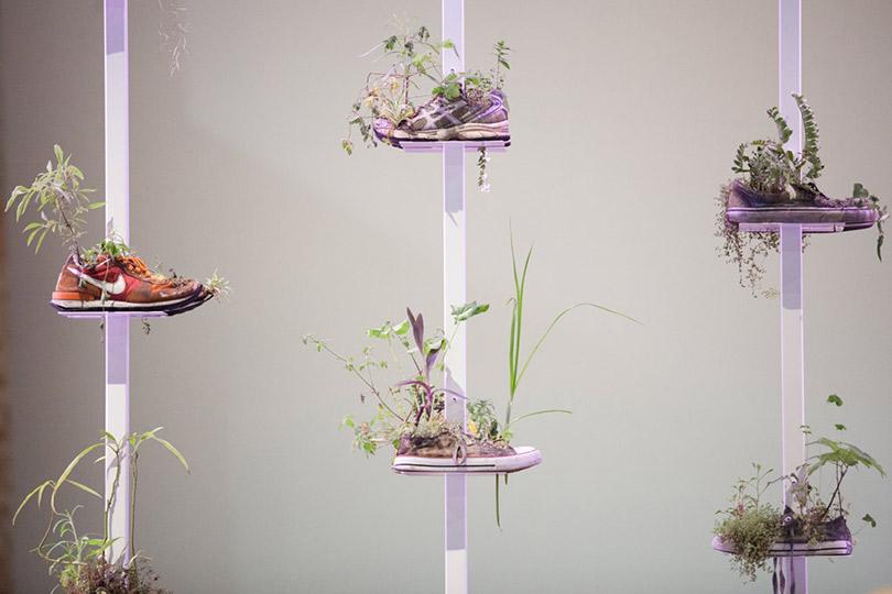 Выставка Collection deChaussures Мишеля Блази