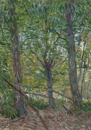 Винсент Ван Гог. Деревья иподлесок.1887