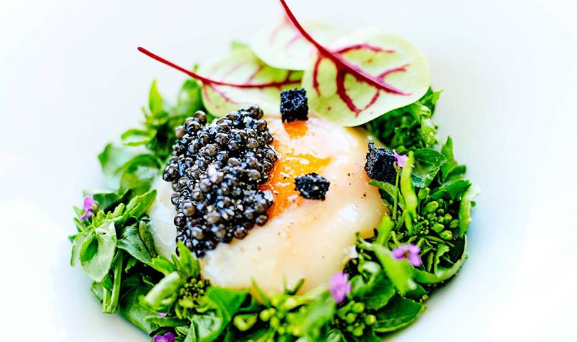 Один отель, три ресторана ипять звезд Michelin впарижском GeorgeV. L'Orangerie