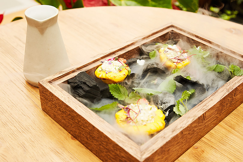 Modus: Тартар изкорнеплодов, водорослей искремом изпатисcонов