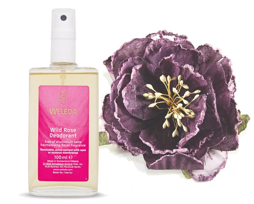 Total Beauty: красавицы не потеют? Натуральные дезодоранты и другие методы борьбы с потоотделением. Weleda Wild Rose Deodorant